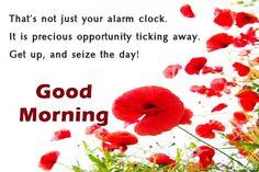 #goodmorning #happymorning #mondaymotivation #monday #MondayMorning #GoodMorningWorld #mondaythoughts