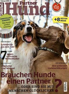 1000 images about hundeleben on pinterest magazine covers magazines and dogs. Black Bedroom Furniture Sets. Home Design Ideas