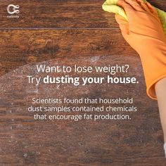 Sure, a dusty house is DEFINITELY why we haven't hit our goal weights yet. Check out the full article on Curiosity.com and in the Curiosity app! #dust #dusty #springcleaning #weightgain #weightloss #fat #curiosity Want To Lose Weight, Weight Gain, Weight Loss, Dusty House, Spring Cleaning, Curiosity, Weights, Goal, Encouragement