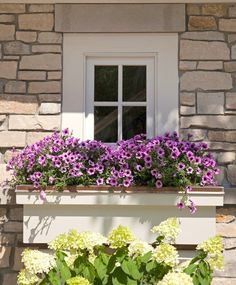 Window garden is a plant put in a box outside the home window. If there is still little room outside the home window, it can be utilized to make the plant box. Country White Kitchen, Traditional Dining Rooms, Plant Box, Garden Windows, Kitchen Paint Colors, Hallway Designs, Flower Boxes, Flower Containers, Window Boxes
