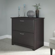 Red Barrel Studio Hillsdale 2-Drawer Lateral Filing Cabinet Finish: