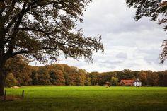 De Borch, Beuningen (ov) ©Antoon Morsink