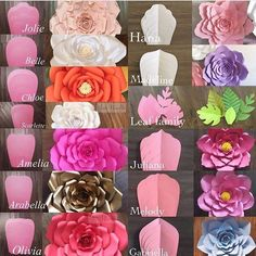 Modelos de flores gigantes de papel - Giant flower template and what the flower looks like Giant Paper Flowers, Diy Flowers, Fabric Flowers, Wedding Flowers, Paper Wall Flowers Diy, Paper Flowers How To Make, Flowers Decoration, Happy Flowers, Diy Paper