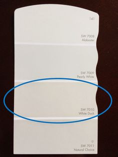 Sherwin Williams White Duck for kitchen cabinets