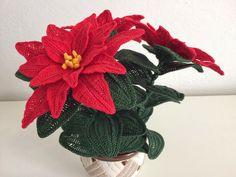 La pianta ornamentale più famosa e regalata durante le feste natalizie. Semplice ed elegante al tempo stesso la Stella di Natale regala...