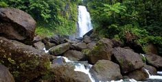 Ecotourism in Dominica: Island Paradise - Mynatour Little Island, Travel And Tourism, Sustainability, Caribbean, Waterfall, Paradise, World, Nature, Outdoor