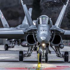 F-18  #f18 #hornet