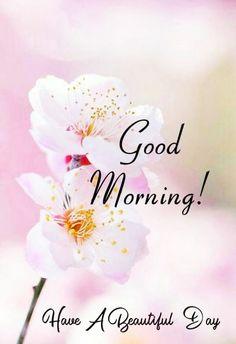 Happy Morning Images, Good Morning Friday Images, Beautiful Morning Messages, Latest Good Morning Images, Good Morning Nature, Good Morning Happy Sunday, Good Morning Beautiful Images, Good Morning Cards, Good Morning Greetings
