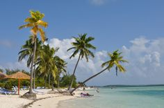 Coco-Cay is Royal Caribbean's private island located in the Bahamas