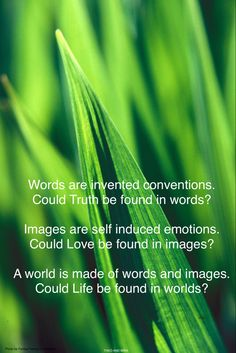 World Photo, Founded In, Inventions, Self, Words, Life, Horse