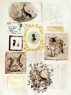I love the style of these sketches by Rosemary Miller