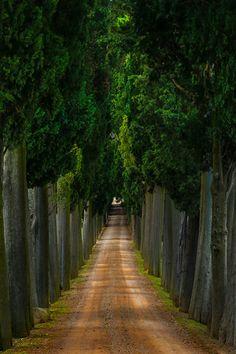 Tuscan Path - Val d'Orcia Region, Tuscany, Italy
