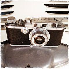 RAMÓN GRAU. Director of Photography: LeicaIIC . La mas veterana de la familia . Barcelona octubre de este año .