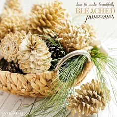 Learn how easy and inexpensive it is to make beautifully bleached pincones for your fall, Christmas, or holiday decor and crafts.