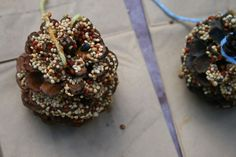 Pine cone bird feeders are a great Earth Day activity for kids! by consuelo Bird Feeder Craft, Pine Cone Bird Feeder, Bird Feeders, Earth Day Activities, Activities For Kids, Crafts For Kids, Arts And Crafts, History Activities, Preschool Crafts