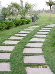 GreenStar Landscape Pvt. Ltd. always love to make environment healthy and fresh...