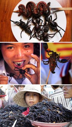 *Bon Appetit: 14 Bizarre Foods That Will Make You Squirm - http://weburbanist.com/2012/09/14/bizarre-foods-that-will-make-you-squirm/
