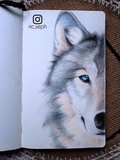A wolf made with colored pencils : drawing color pencil art, colored pencil artwork, Colored Pencil Artwork, Color Pencil Art, Colored Pencils, Animal Drawings, Pencil Drawings, Art Drawings, Wolf Colors, Wolf Sketch, Picasso Paintings