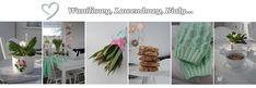 Waniliowy, Lawendowy, Biały...: CHLEB owsiany Cactus Plants, Cake Recipes, Food Cakes, Recipies, Cakes, Easy Cake Recipes, Cacti, Kuchen, Cactus
