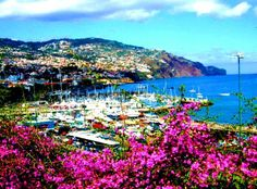 Top 10 best tourist places in Portugal Funchal, Madeira Funchal, Places In Portugal, Portugal Travel, Beautiful Islands, Beautiful Places, Beautiful Pictures, Home Exchange, Tourist Places, Beaches In The World