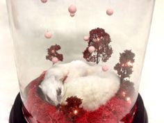 A beautiful Stoat in a glass dome | Harriet Horton Taxidermy