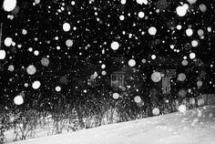 "de-salva: ""From the Cycle: Hokkaido Exhibition Title: Hokkaido / The World Through My Eyes * Galleri Riis, Stockholm © Daidō Moriyama "" Japanese Photography, History Of Photography, Contemporary Photography, Fine Art Photography, Street Photography, Heart Photography, White Photography, Contemporary Art Daily, Expo"