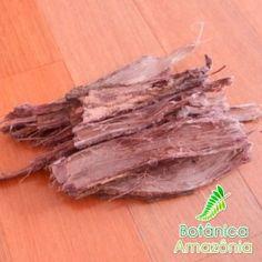 Jurema Preta - Mimosa hostilis / tenuiflora - Casca de Raiz
