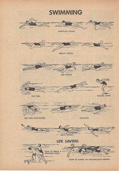 Swimming, Sports, Life Saving, Vintage Illustration, 1940s, Double Sided Print, Sugar