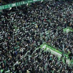 Ultras Football, Ronaldo Juventus, Best Club, Scp, City Photo, World, Grande, Instagram Posts, Sports