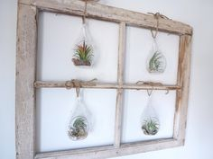 4Pane Vintage Air Plant Window from the Original by RootsinRust, $132.00