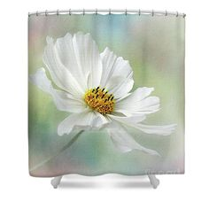 Photography Shower Curtain featuring the photograph Cosmos Pastel By Kaye Menner by Kaye Menner