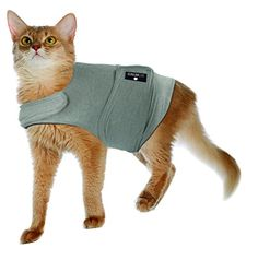 Calm Cat CC1201-Small Anti Anxiety & Stress Relief Coat for Cats-Grey, Small