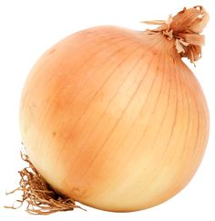 Brown-Onion-PNG-image.png (1265×1299)