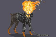Dogs of the Marvel Universe 2