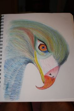 Eagle in colored pencil by Denise Crawford