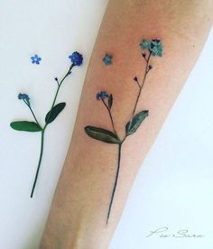 Forget me not flower tattoo on the inner forearm.