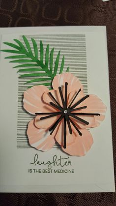 Hibiscus #flowermarket