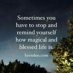 Sometimes you have to stop and remind yourself how magical and blessed life is. -Brendon Bouchard