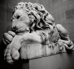 Sleeping Lion Statue at Chatsworth House, UK.