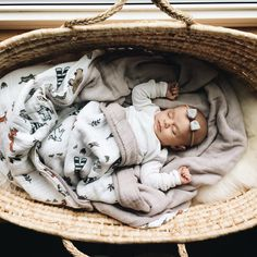 """202 Likes, 19 Comments - Meredith Schock Zimmermann (@merezimmermann) on Instagram: """"This babe naps like a champ. #elleolivia"""""""