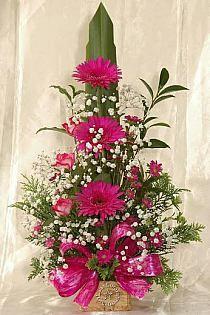Tropical Flower Arrangements, Creative Flower Arrangements, Ikebana Flower Arrangement, Funeral Flower Arrangements, Beautiful Flower Arrangements, Unique Flowers, Exotic Flowers, Beautiful Flowers, Fresh Flowers