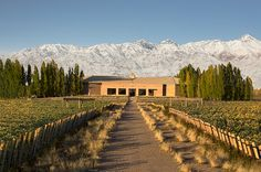 See Lonely Planet's recommendations for four Mendoza wineries to visit when travelling the region, from their new wine travel book, Wine Trails.