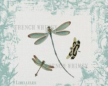 Large Shabby Chic Dragonfly, French Style  Printable Wall Art, 12 x 12 inches. Libellules, Digital Download, High Res