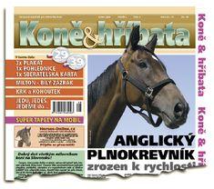 Srpen 2006 Equestrian, Magazines, Horses, Animals, Journals, Animales, Animaux, Horseback Riding, Horse
