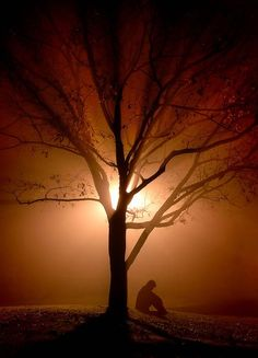 Dementia Caregivers Contemplate Suicide.    http://www.alzheimersreadingroom.com/2013/03/dementia-caregivers-contemplate-suicide.html