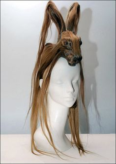 animal head hair