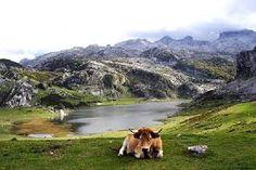 Resultado de imagen de cantabria paisajes naturales