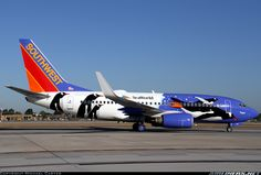 """Southwest Airlines   Boeing 737-7H4   N280WN (cn 32533/2294)   """"Penguin One"""""""