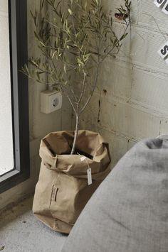 bolsas de papel www.luanord.com