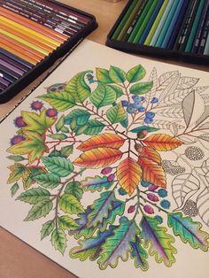 Secret Garden An Inky Treasure Hunt And Coloring Book Johanna Basford By J3nn1b34n